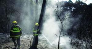 فـي خامس يوم من الحرائق .. إطفائيو إسرائيل يرون قرب الانهيار واعتقال 14