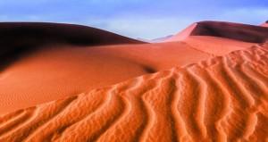 فريق إزكي للفنون البصرية ينظم رحلة تصوير إلى صحراء الربع الخالي