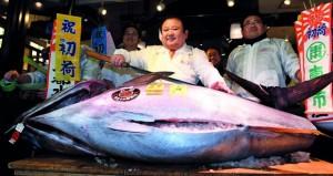 سمكة تونة بـ 2ر74 مليون ين في اليابان