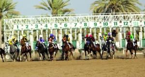 ختام ناجح لفعاليات السباق التاسع لنادي سباق الخيل السلطاني بمضمار الرحبة ببركاء