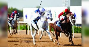 الفرس نجمة للخيالة السلطانية تفوز بالمركز الأول بمضمار أبوظبي