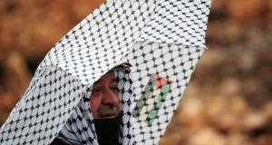 الاحتلال يصادق على تسمين مستوطناته بالقدس ورام الله المحتلين