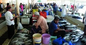 بحث تطوير بيئة العمل في أسواق الأسماك