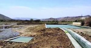 البلديات الإقليمية تنفذ عددا من المشاريع المائية بولايات محافظة الظاهرة