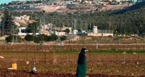 مئات الفلسطينيين يشيعون جثمان الشهيد أبو القيعان