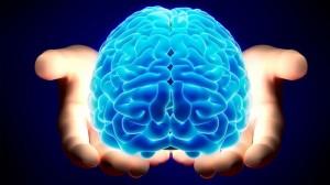 Brain_kologoz