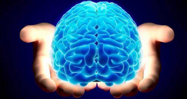 """دراسة: نقص الجلوكوز في الدماغ يسبب """"الضعف الإدراكي"""""""