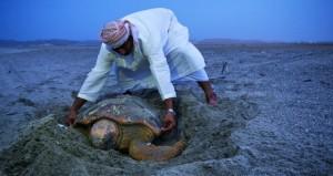 14 محمية برية وبحرية تحفظ التنوع الأحيائي والموارد الطبيعية بالسلطنة بمساحات يبلغ مجموعها 9 آلاف كيلومتر مربع