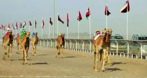 تواصلمنافسات المهرجان السنوي الثاني لسباقات الهجن العربية بميدان البشائر بأدم