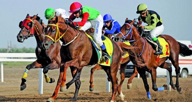 اليوم.. 9 أشواط مثيرة يشهدها السباق التاسع عشر للخيول