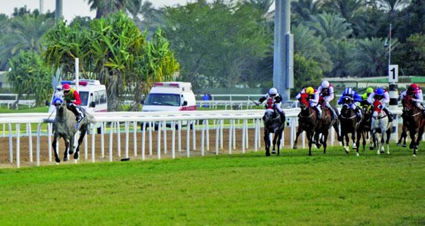 الحصان ميسور للخيالة السلطانية يتوج بلقب بطولة دربي الإمارات للخيول العربية الأصيلة