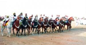 نجاح كبير لرابع مسابقات رياضات الخيل التقليدية بولاية الكامل والوافي