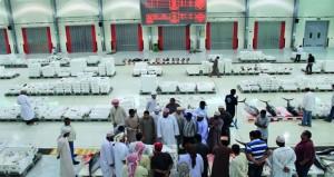 أكثر من 9 ملايين ريال عماني حجم مبيعات سوق الجملة المركزي للأسماك