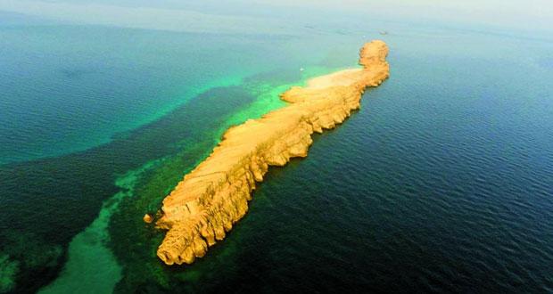 جزيرة من جزر الديمانيات من المصدر