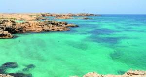 وضع خطط وبرامج الاستثمار السياحي للمحميات الطبيعية