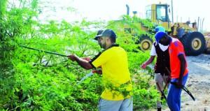 معسكر عمل لإزالة أشجار المسكيت بشناص