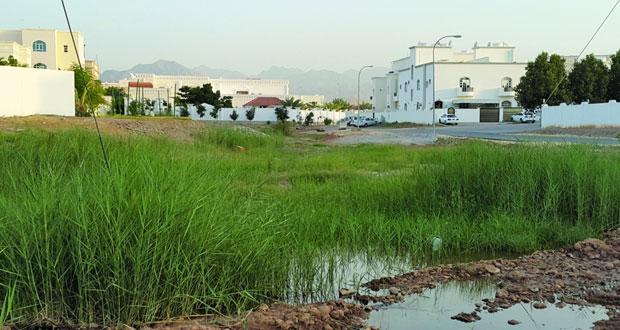 """""""البلديات الإقليمية"""" تنفذ دراسة حول ارتفاع مستويات المياه الجوفية في بعض المناطق بمحافظة مسقط"""