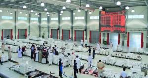 289 ألف ريال عماني إجمالي مبيعات سوق الجملة المركزي للأسماك في مايو الماضي