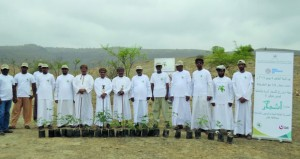 استزراع 1000 شتلة من الأشجار البرية والمحلية بظفار