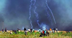 الاحتلال يصعد من عدوانه على الفلسطينيين وعشرات المصابين باعتداءات متفرقة