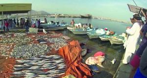 6.1% ارتفاعا بإنتاج السلطنة من الأسماك خلال الربع الأول من 2017