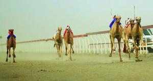 فوز الظبي وضبيان وفزعة بالمراكز الأولى فى سباق الهجن ( المفاريد) على ميدان صحار