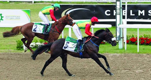 خيول الخيالة السلطانية تتألق على مضمار تشلمسفورد البريطاني