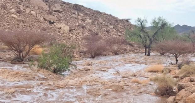 أمطار غزيرة وجريان الأودية بينقل