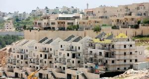 أطماع إسرائيل الاستيطانية وصلت إلى الذروة