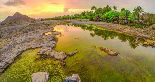 آدم الراشـدي يوثق جماليات الطبيعة بتكويناتها المتنوعة وبمشاهدها الساحرة