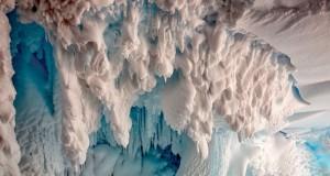 علماء يشيرون لاحتمال تواجد كائنات حية غيرمعروفة بالقطب الجنوبي