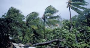 """الإعصار """"ماريا"""" يشتد إلى عاصفة من الفئة الخامسة"""