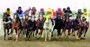 لجنة ظفار للفروسية تنظم سباق للخيول العربية والمهجنة 29 سبتمبر