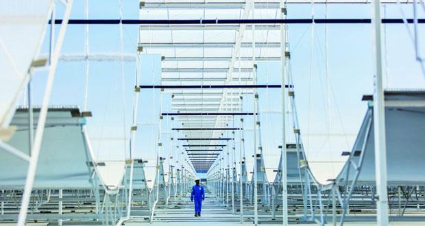 مع اقتراب مرحلة تشغيله.. 1جيجا واط الطاقة الإنتاجية المتوقعة لـ(مرآة)