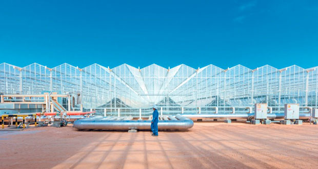 بدء إنتاج البخار في أول البيوت الزجاجية بـ(مرآة)