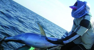 الزراعة والثروة السمكية لـ(الوطن): مستمرون في مكافحة الأيدي العاملة الوافدة المخالفة لـ(الصيد البحري)