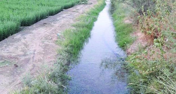 """""""المقعودة"""" .. حلقة مناداة لشراء مياه الفلج لسقي المزروعات وعرف قديم توارثته الأجيال"""