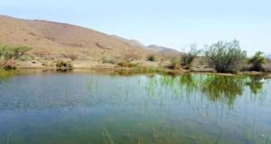 بحيرة طبيعية أخّاذة على الشارع العام المؤدي لدماء والطائيين
