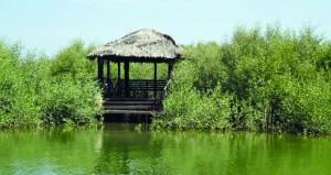 """""""البيئة والشؤون المناخية"""" تطرح قريباً عدداً من المحميات الطبيعية للاستثمار منها محمية القرم"""