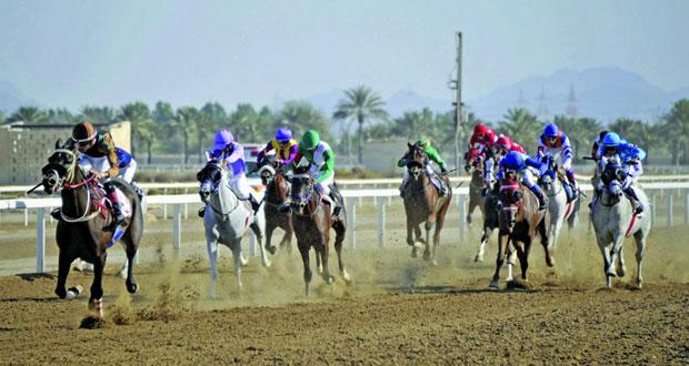 أكثر من (120) خيلا تتنافس على مضمار الرحبة اليوم (6) أشواط للخيول العربية وشوطان للخيول المهجنة بمشاركة خيول جديدة