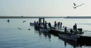 قطاع الثروة السمكية يستهدف استثمارات تصل لمليار ريال عماني 93% منها سيمول من القطاع الخاص