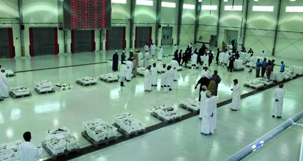 373 ألف ريال عماني مبيعات سوق الجملة للأسماك في أكتوبر الماضي