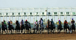 فوز مجد دو لوب بكأس الخيول العربية وأربيان سكايز بكأس الخيول المهجنة