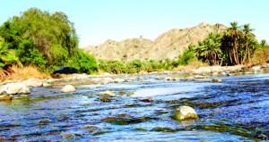 قرية فزح بلوى .. روضة خضراء وواحات زراعية وتراث أصيل ..