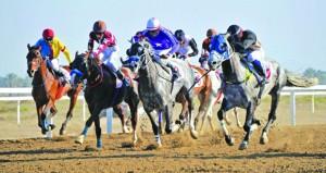 الجمعة مضمار الرحبة يشهد سباق الدربي العماني