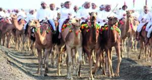 انطلاق فعاليات مهرجان (النعيمي ) السنوي الثامن عشر لعرضة الهجن والخيل بميدان سيح الطيبات بولاية صحم اليوم