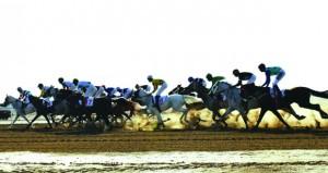 السباق الثاني عشر لنادي سباق الخيل السلطاني