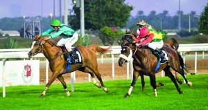 الحصان عارف للخيالة السلطانية يحل ثانيا على مضمار أبوظبي