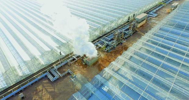 """افتتاح محطة """"مرآة"""" لتوليد البخار بالطاقة الشمسية بحقل أمل"""