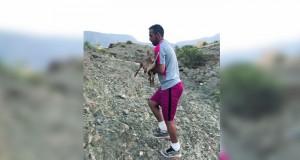 العثور على حيوان وعل عربي بالرستاق